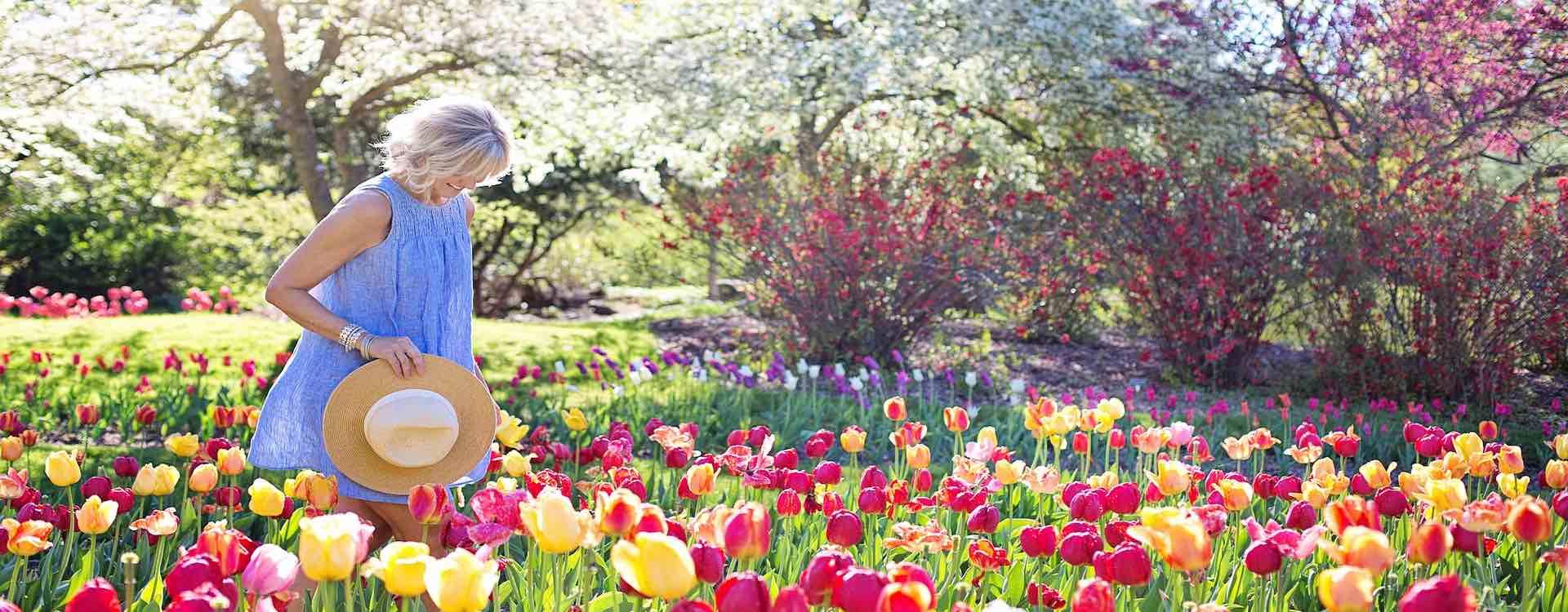 Gartenservice fuer privatkunden